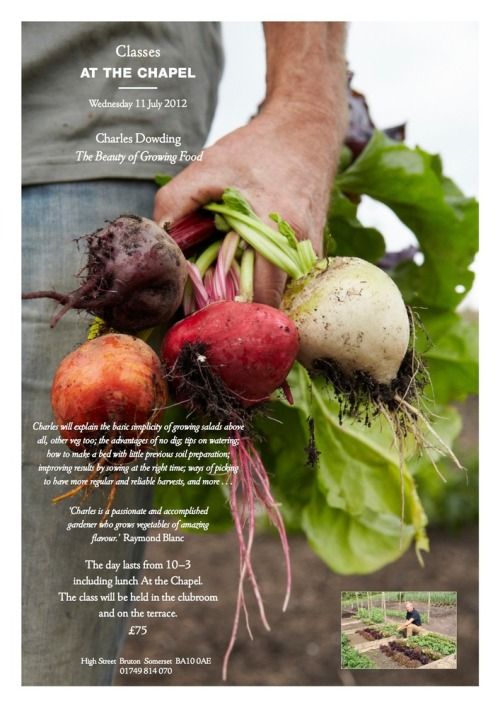 The_beauty_of_growing_food_1_copy