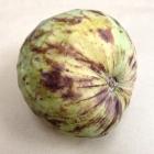 Bruton Wholefoods 7 (1)
